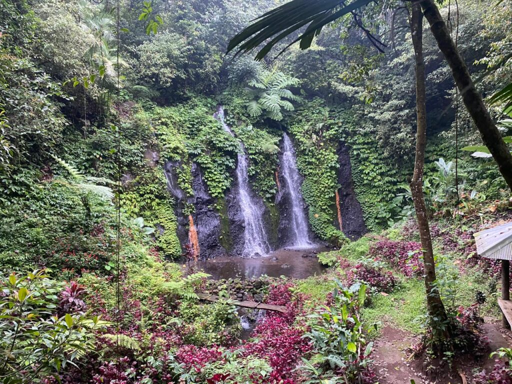 twin-waterfall-banyu-wana-amertha-waterfall